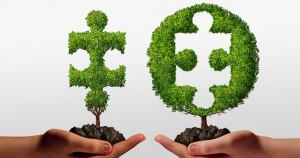 banniere-partenaires-business1